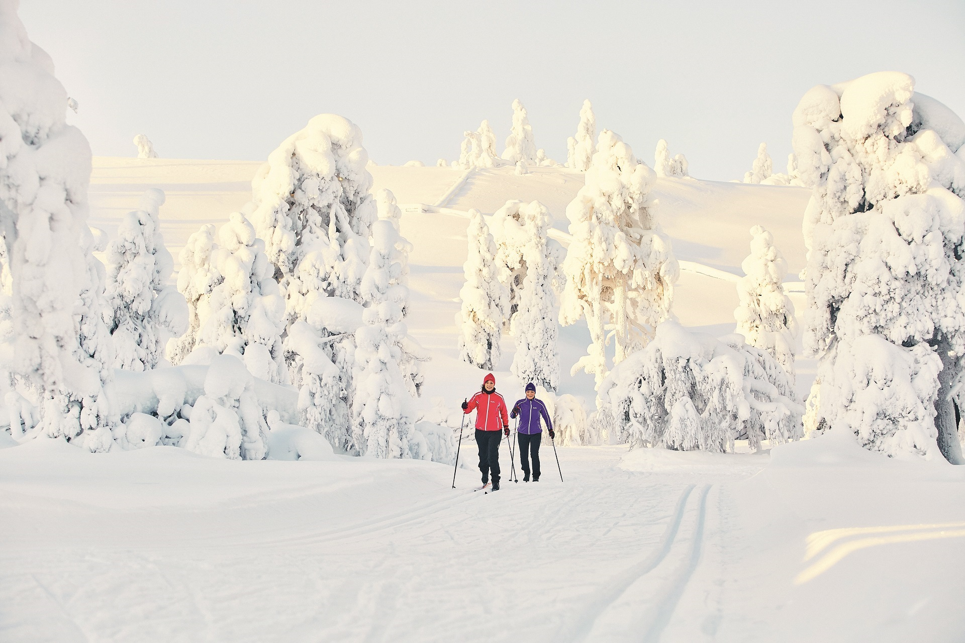 S'amuser en ski de fond