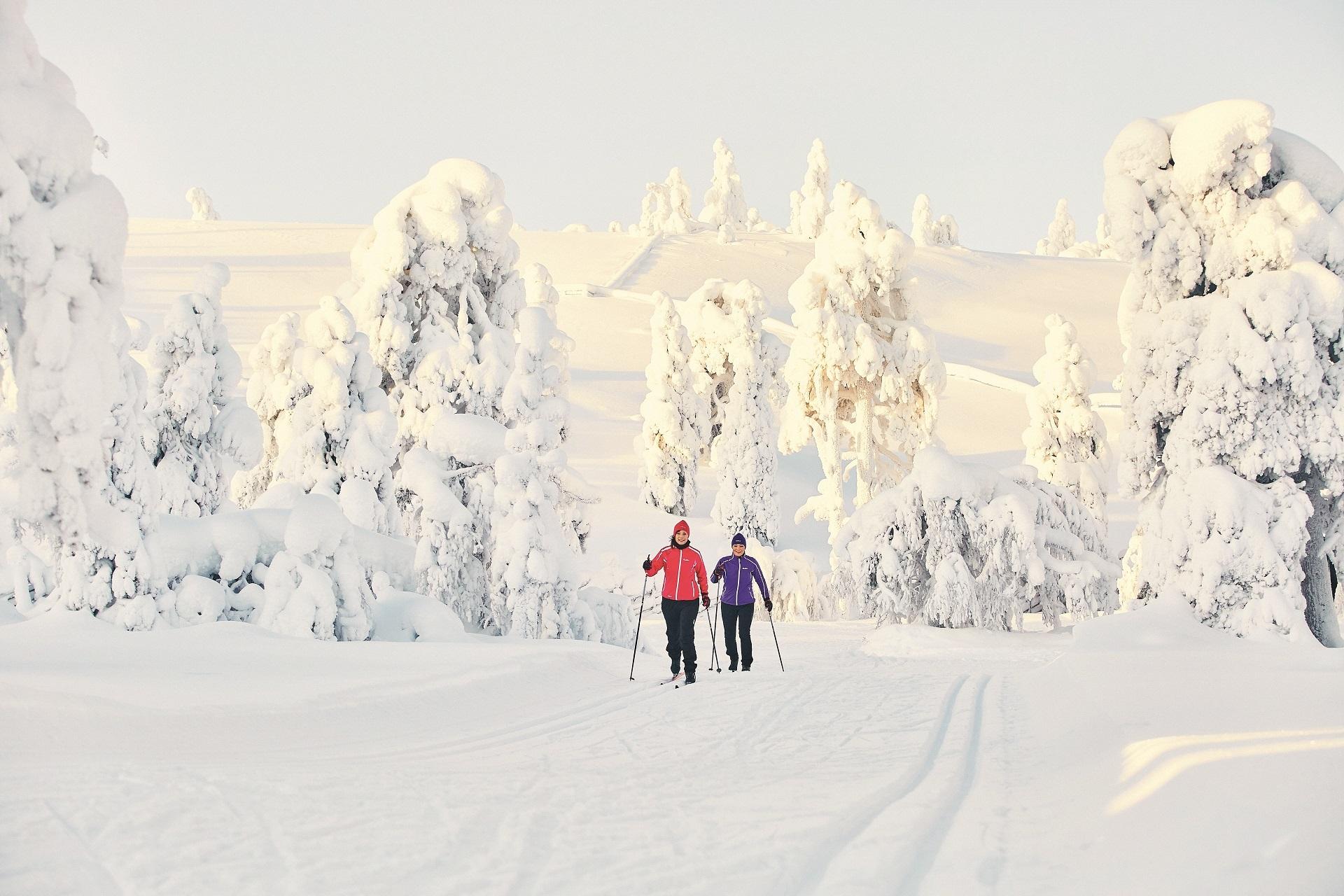 La piste de ski de fond traverse la forêt enchantée !